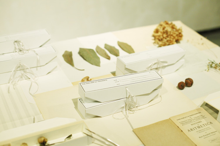 hakoma-dr-table2