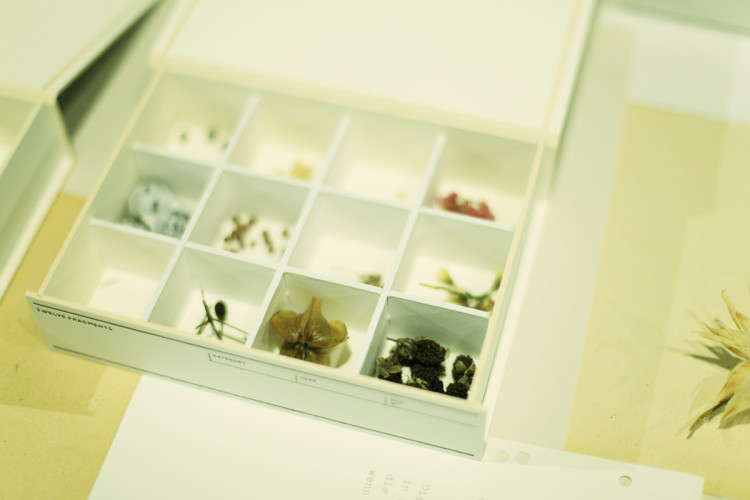 hakoma-dr-table4